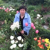 Лариса, 58 лет, Водолей, Сургут
