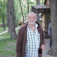 Михаил, 60 лет, Козерог, Воронеж