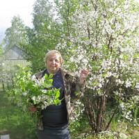 Елена, 56 лет, Овен, Сегежа
