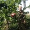 анатолий, 61, Алчевськ