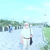 Anatoliy, 78, г.Франкфурт-на-Майне