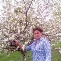 Светлана, 53 года, Скорпион, Старый Оскол