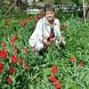 Людмила, 55, г.Шымкент