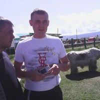 DIMA, 32 года, Лев, Улан-Удэ