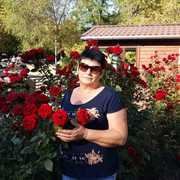 Подружиться с пользователем Татьяна 60 лет (Весы)