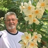 Frank Beson, 56, Houston