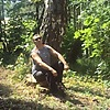 Vyacheslav, 47, Salavat