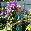 Galina, 60, Sergiyev Posad