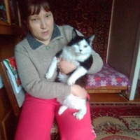 Наталья, 41 год, Близнецы, Новосибирск