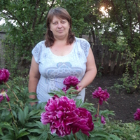 Татьяна, 49 лет, Козерог, Курск