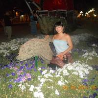 Ольга, 37 лет, Козерог, Новосибирск