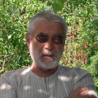 владимир, 73 года, Лев, Киев