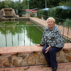 Валентина, 68, г.Орел