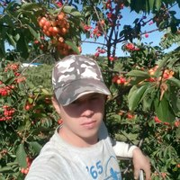 Александр, 26 лет, Стрелец, Москва