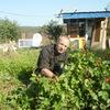 ваня, 68, г.Тамбов