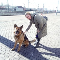 Ольга, 53 года, Козерог, Тюмень