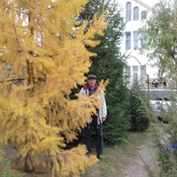 валерий, 72 года, Овен, Старый Оскол