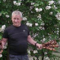 Григорий, 67 лет, Водолей, Киев