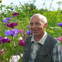 Дмитрий, 75 лет, Весы, Кинешма