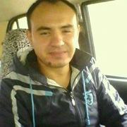 Дима 35 Ташкент