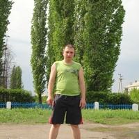 сергей, 35 лет, Лев, Воронеж