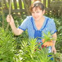 Елена, 49 лет, Козерог, Абинск