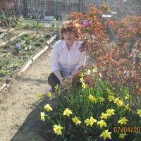 алла, 61 год, Водолей, Керчь