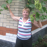 раиса, 63 года, Рыбы, Новосибирск