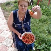 расиля ахатовна шорин, 64 года, Весы, Уфа