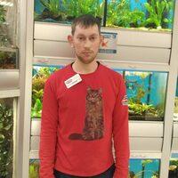 Сергей, 27 лет, Козерог, Москва