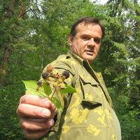 Ігор, 56 років, Лев, Львів