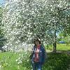 Елена, 44, г.Белгород