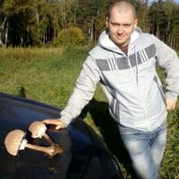 Евгений, 39 лет, Близнецы, Балашиха