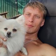 Dmitryi 35 лет (Рыбы) Харьков