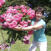 Наталия, 60 лет, Стрелец, Киев