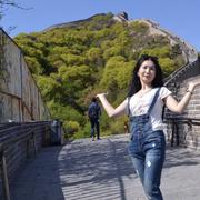 Sara 40 Пекин