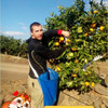 Andrey, 36, Pervomaysk