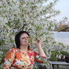 Елена, 60, г.Брянск
