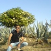kakoysshs, 58, г.Родос