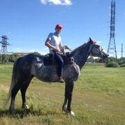 Nurzhan 31 год (Рак) хочет познакомиться в Жымпитах