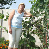 Татьяна, 61, г.Дубно
