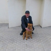 Павел, 51 год, Стрелец, Волгоград