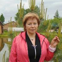 зоя, 64 года, Стрелец, Витебск
