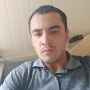 Амир 29 Орша