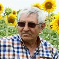 Вячеслав, 73 года, Рак, Ялта