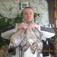 Андрей, 47 лет, Стрелец, Запорожье