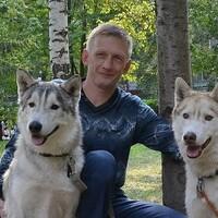 Владимир, 48 лет, Скорпион, Новосибирск