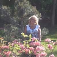 Светлана, 67 лет, Весы, Таллин