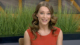 Видео: Давай поженимся! Выпуск от 24.09.2013