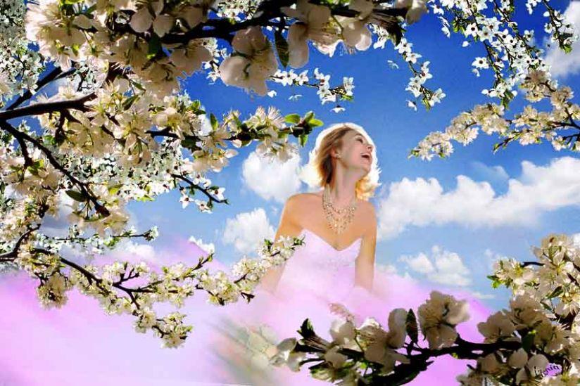 множество ты моя холодная весна картинки начинки